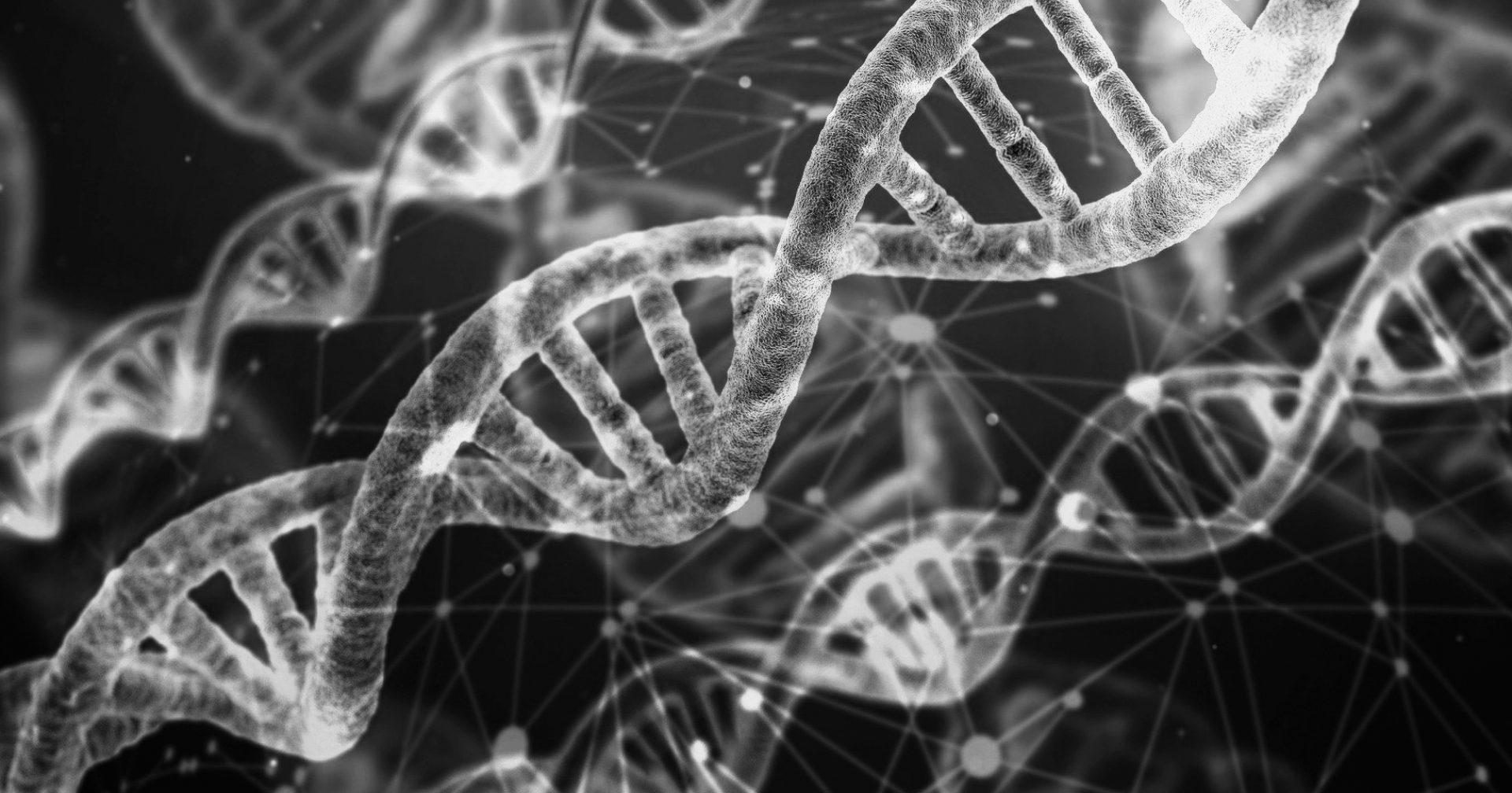 8th Colloquium on Genetics